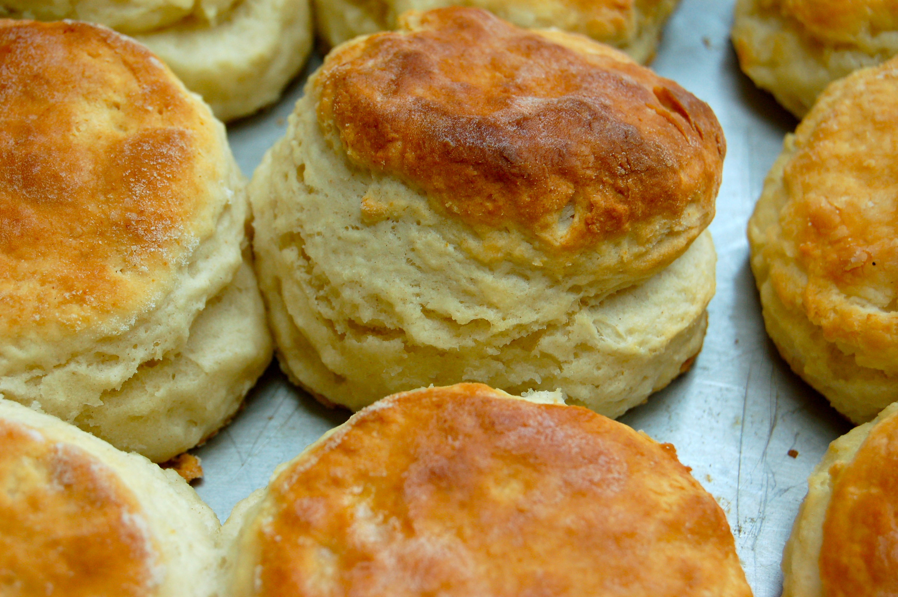 Old Fashioned Buttermilk Biscuits |